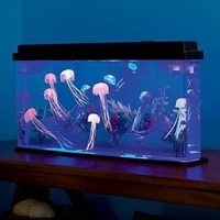 Giant Jellyfish Aquarium with Color-Changing LED Lights:Amazon:Toys & Games