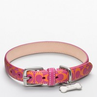 Coach :: Signature c Printed Leather Collar