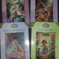 Disney Fairies book set