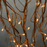 Lighted Branches Natural Curly Willow Branches 39&quot; Gold Plug In    (5 branches)   $9.99