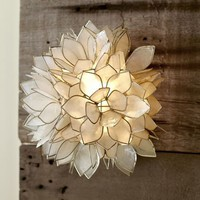 Capiz Sconce