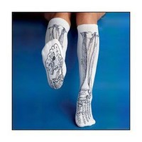 Anatomical Chart Co. - Bone Socks - - White: Industrial &amp; Scientific