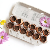 DIY: Make An Egg Crate Garden For Spring! - Free People Blog
