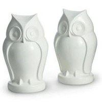 "White Owl Resin Bookends - Set of 2 (7.25""x 4"") - Barnes & Noble"