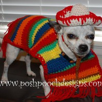 Dog Poncho and Sombrero - Cinco De Mayo Dog Costume