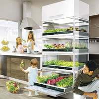 The Nano Garden Lets You Grow Veggies Right in Your Kitchen | Brit + Co.