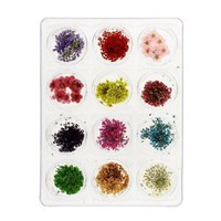MASH Nail Art Real Dried Flower Kit Set