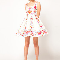 ASOS Skater Dress in Floral Embroidery