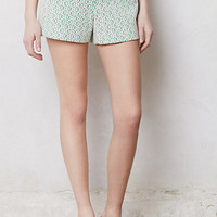 Rose Point Shorts