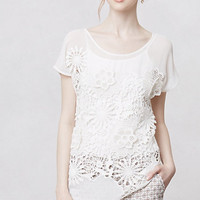 Coneflower Lace Blouse