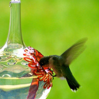 The Kennedy Style Hummingbird Feeder The by KennedyGlassStudio