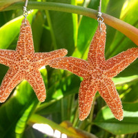 Real Orange Sugar Starfish Earrings