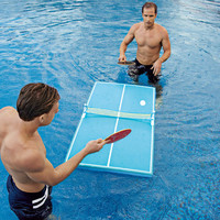Floating Ping Pong Tables at BrookstoneBuy Now!