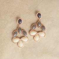 Cafe Elegance Earrings at ShopRuche.com