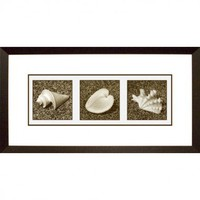 Phoenix Galleries Pepper Framed Print - HP267 - All Wall Art - Wall Art &amp; Coverings - Decor