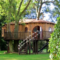 Blue Forest Tree Houses at Firebox.com
