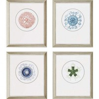 Paragon Ocean Gems by Unknown Waterfront Art (Set of 4) - 28&quot; x 24&quot; - 7038 - All Wall Art - Wall Art &amp; Coverings - Decor