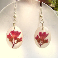 Wildflower Coral Bell Resin Real Pressed Flower  Earrings