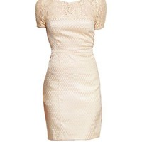 Bodycon Midi Dress with Lace Panel