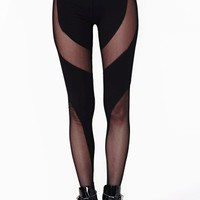 Coil Mesh Leggings