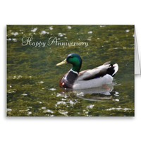 Happy Anniversary Card from Zazzle.com