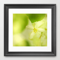 Yellow flower Framed Art Print by Guido Montañés