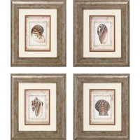 Propac Images Shell PrintArt Set - Shell Series - All Wall Art - Wall Art & Coverings - Decor