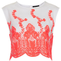 Fluoro Embroidered Organza Top