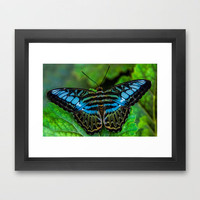 A-FLUTTER Framed Art Print by catspaws