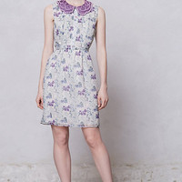 Wisteria Collared Dress