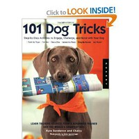 101 Dog Tricks: Step by Step Activities to Engage, Challenge, and Bond with Your Dog: Kyra Sundance, Chalcy: 9781592533251: Amazon.com: Books