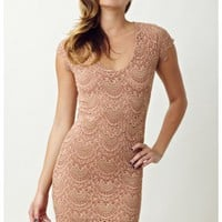 Nightcap Spanish Lace Cap Sleeve Dress
