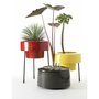 Spun Aluminum Pod Planters &amp; Black Stands | Sprout Home