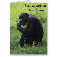 Funny Graduation, Chimpanzee Dreamer, Lemur Grad Greeting Cards from Zazzle.com