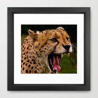 I'M HUNGRY ! Framed Art Print by catspaws