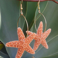 Real Orange Starfish Hoop Earrings by shandahawaiiandesign on Etsy