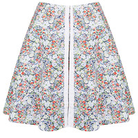 Floral Hook and Eye Skater - View All - Skirts - Clothing - Topshop