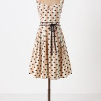 De Chelly Dress-Anthropologie.com
