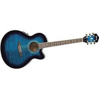 Ibanez AEL20ENT Acoustic-Electric Guitar | GuitarCenter