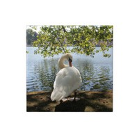 Schloss Benrath - Swan by the Pond Ceramic Tile from Zazzle.com