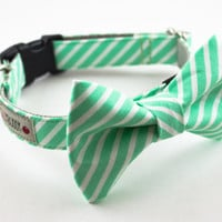 Bright Mint Stripes Dog Bow Tie Collar
