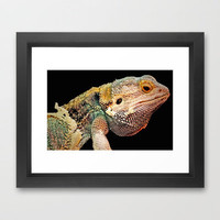 BEARDED DRAGON Framed Art Print by catspaws