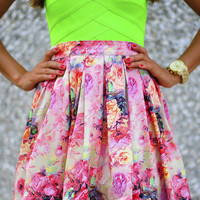 Blair Waldorf Skirt: Blush/Multi | Hope's