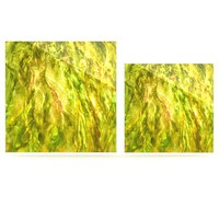 "Rosie Brown ""Tropical Delight"" Luxe Square Panel 