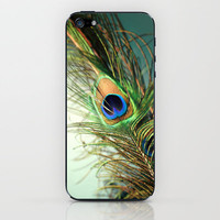 peacock feather-teal iPhone & iPod Skin by Sylvia Cook Photography