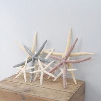 Gridley & O'Boyle: Starfish Collection X, at 33% off!