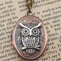 Lovely Steampunk Owl Locket Necklace Vintage Style by sallydesign