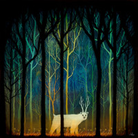 Profound Encounters Amid the Forest Deep Print