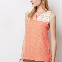 Karys Lace Top