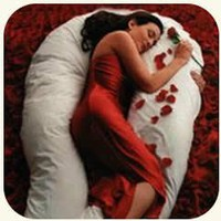 Petite Comfort U Total Body Support Pillow:Amazon:Everything Else
